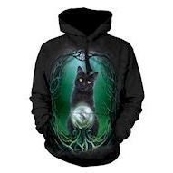 Rise of the Witches Adult hoodie