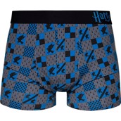 Harry Potter Mens Fitted Trunks - RAVENSCLAW