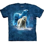 Polar Collage t-shirt